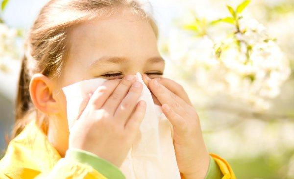 Reacții alergice de sezon